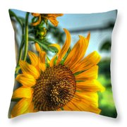 Early Morning Sunflower Throw Pillow