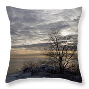 Early Morning Tree Silhouette On Silver Sky Throw Pillow