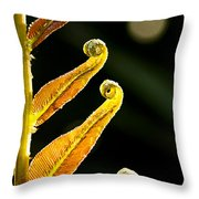 Early Morning Unfurling Throw Pillow