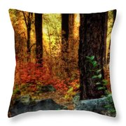 Early Morning Walk Throw Pillow