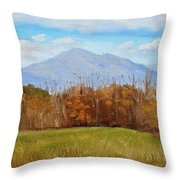 Early November At First Bridge Throw Pillow