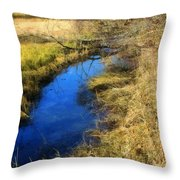 Early On A Frosty Morning Throw Pillow