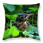 Early Robinhood Throw Pillow