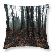 Early Shadows Throw Pillow