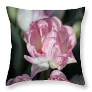 Early Spring 4 Of 5 Throw Pillow
