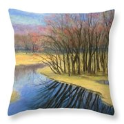 Early Spring At Catfish Corner Throw Pillow