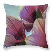 Early Spring Beauty Throw Pillow