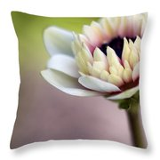 Early Spring  Throw Pillow by Caitlyn  Grasso