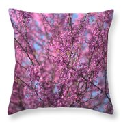 Early Spring Flowering Redbud Tree Throw Pillow
