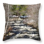 Early Spring Thaw Throw Pillow