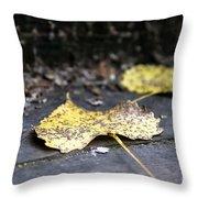 Early Start To Autumn Throw Pillow