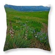Early Summer Walk Throw Pillow