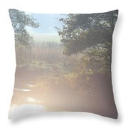 Early Sunny Morning Throw Pillow