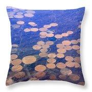 Earth Circles Throw Pillow
