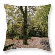 Earth Day Special - Bench In The Park Throw Pillow