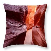 Earth Slice Throw Pillow