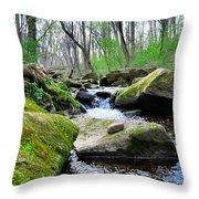 Earthen Falls Throw Pillow