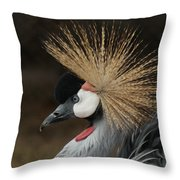 East African Crowned Crane 2 Painterly Throw Pillow