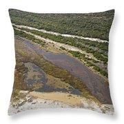 East Coast Aerial Near Jekyll Island Throw Pillow