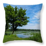 East Harbor State Park - Scenic Overlook 2 Throw Pillow
