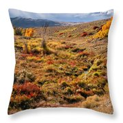 East Of Crowheart Throw Pillow