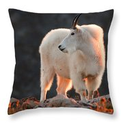 East Of Evening Throw Pillow