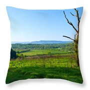 East Tennessee Throw Pillow