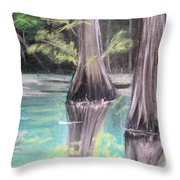 East Texas Cyprus In Pastels Throw Pillow