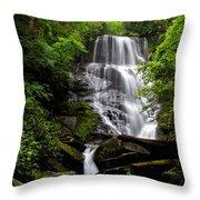 Eastatoe Falls II Throw Pillow