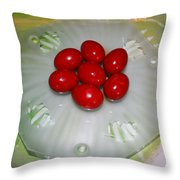 Easter And Red Eggs Throw Pillow