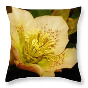 Easter Bloom 2014 Throw Pillow