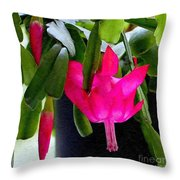 Easter Cactus Digtial Painting Square Throw Pillow