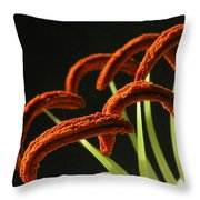 Easter Lily Detail Throw Pillow