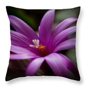 Easter Rose Throw Pillow