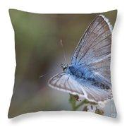 Eastern Baton Blue  Throw Pillow