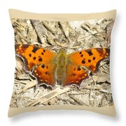 Eastern Comma Throw Pillow