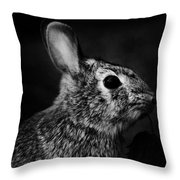 Eastern Cottontail Rabbit Portrait Throw Pillow by Rebecca Sherman