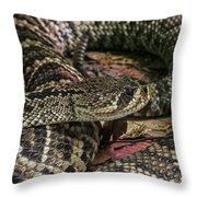 Eastern Diamondback Rattlesnake 1 Throw Pillow