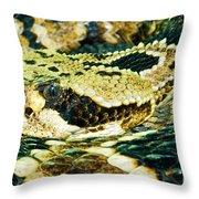 Eastern Diamondback Rattlesnake Throw Pillow