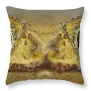 Eastern Giant Toad Throw Pillow