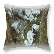 Eastern Gray Squirrel - Sciurus Carolinensis Throw Pillow