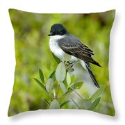 Eastern Kingbird Throw Pillow