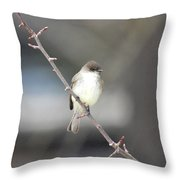 Eastern Phoebe Throw Pillow