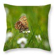 Eastern Pine Elfin Butterfly Throw Pillow