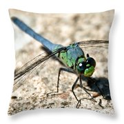 Eastern Pondhawk Side Throw Pillow