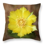Eastern Prickly Pear Cactus Throw Pillow