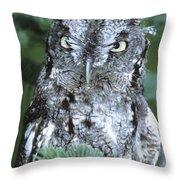 Eastern Screech Owl In Tree Throw Pillow