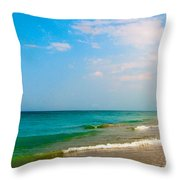 Eastern Shore I Throw Pillow