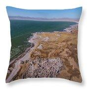 Eastern Side Of Mono Lake Throw Pillow