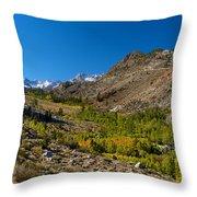 Eastern Sierras 11 Throw Pillow